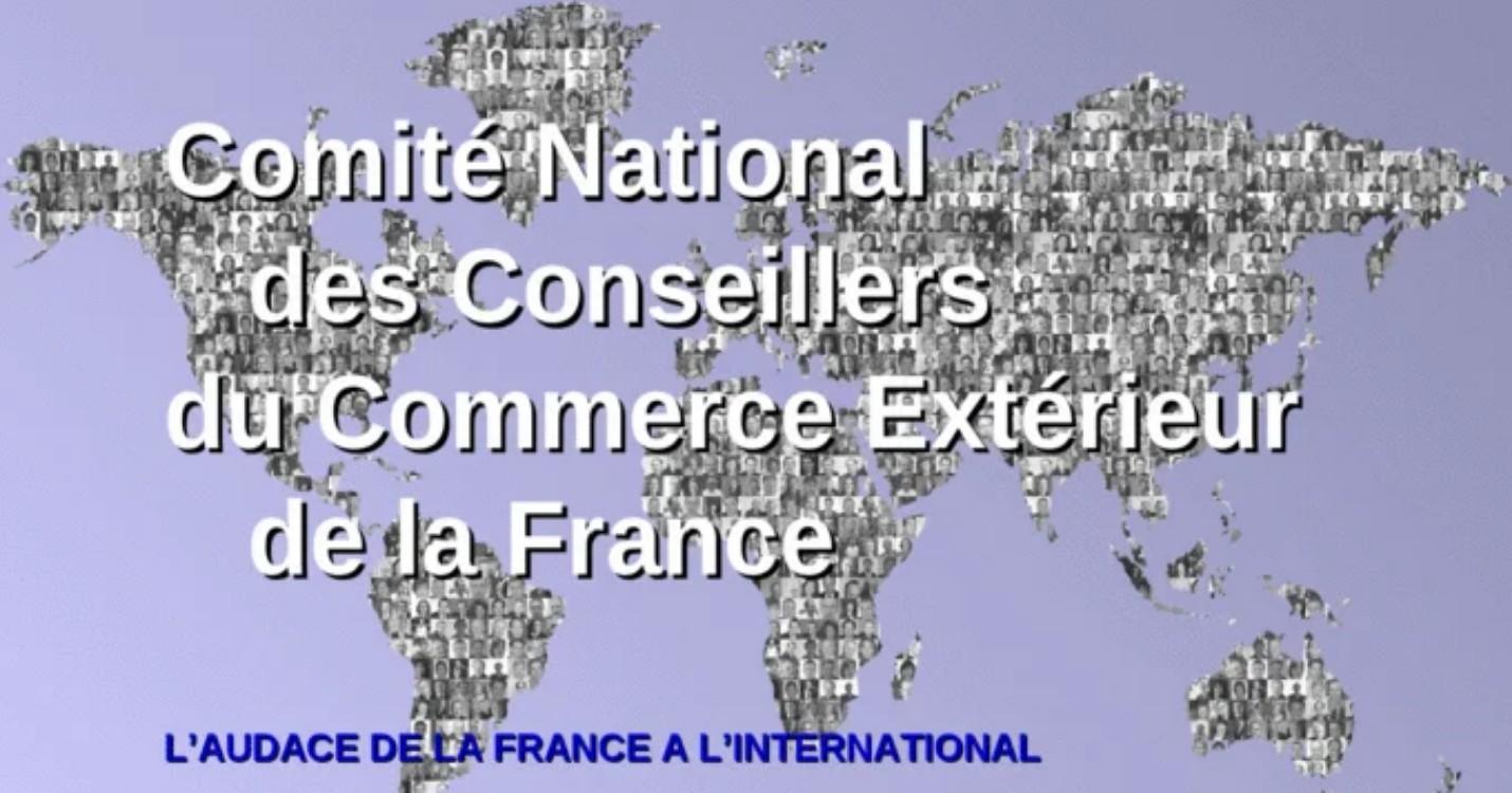 Enquête auprès des entreprises des Français de l'étranger, les EFE