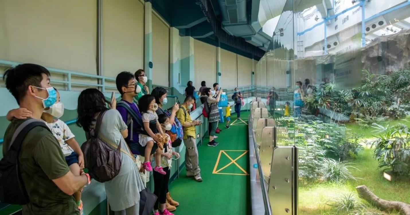Assouplissement des mesures de distanciation sociale, réouverture du musée de Macao