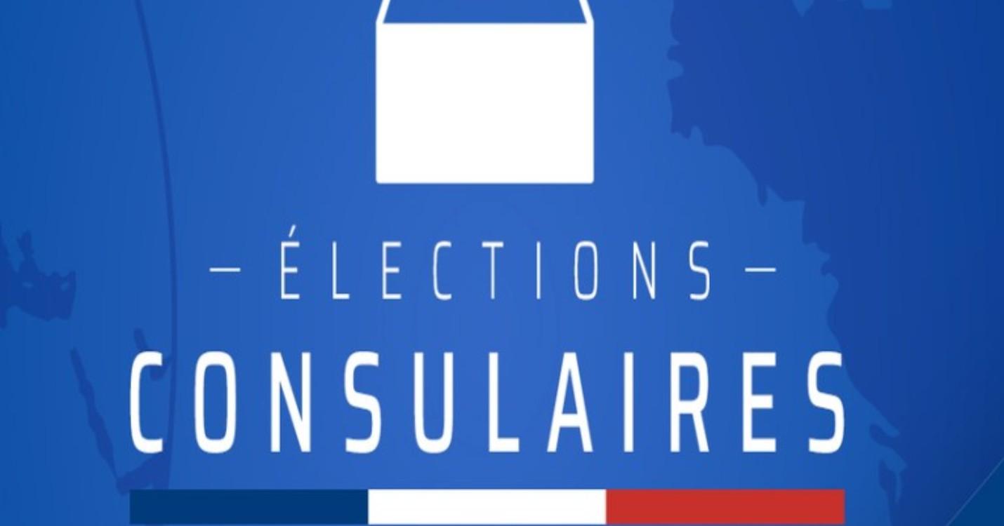 Elections consulaires 2021 : Tous sur le net ?